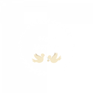 mary-mariees-logo